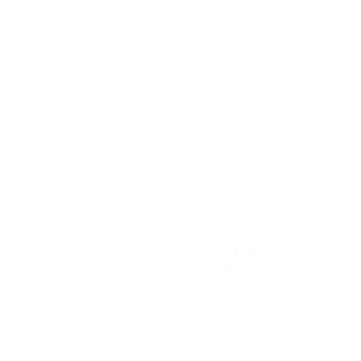 gestion des armes